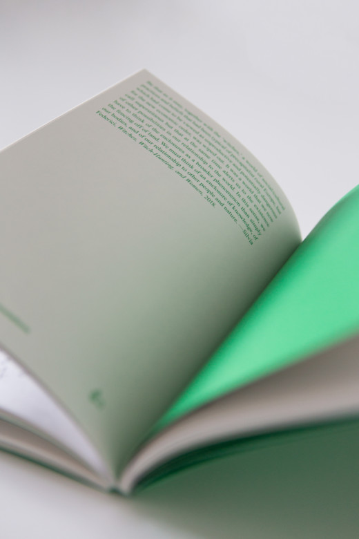 Kirja avoinna pöydällä.